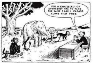 'One size fits all'-benadering van leren is passé
